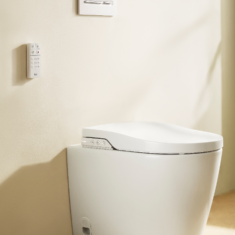 Roca Inspira In-Wash Rimless BTW Smart Toilet